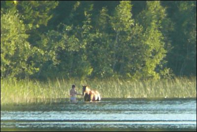 Där långt borta badade de hästar med.