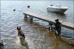 Chiefen och Pontus.. hunden bodde i vattnet.