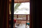 Vaknar första morgonen och ser palmer!