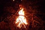 ..och med foto på denna elden vandrade jag hemåt igen.