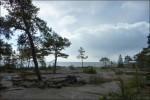 NUUU, ser vi havet efter gått 5min genom skogen!