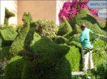 Stolte trädgårdsmästaren :)